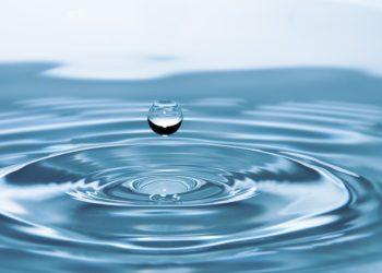 Wasser – ein mächtiger Informationsträger